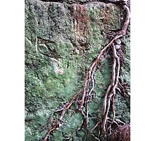 41 Rock Wall Photographic Print