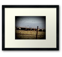 We Got Cows Framed Print