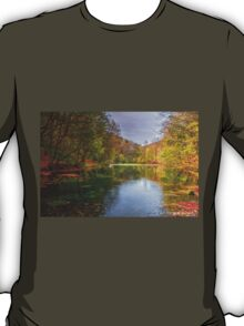 Autumn is here T-Shirt