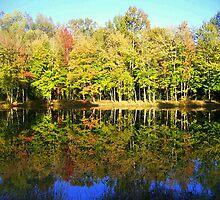 Autumn Mirror by suzannem73