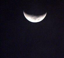 North Carolina Moon by spiritsfreedom