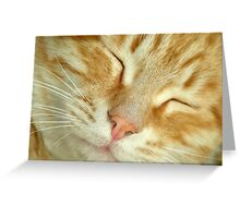 Pure Bliss Greeting Card