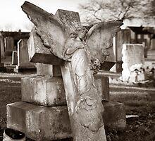 Fallen Angel by Alan Steele