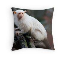 Silvery Marmoset Throw Pillow