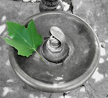 Black and white old drinking fountain by Stormygirl