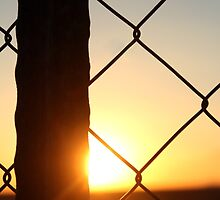 Sunset behind the fence... by Qnita