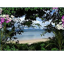 03-Bamboo Shoreline Photographic Print