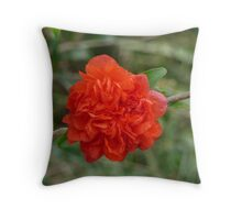 Dwarf Pomegranate Throw Pillow