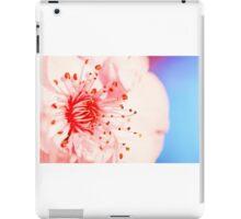 Macro Blossom iPad Case/Skin