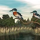 The Kingfishers by Walter Colvin