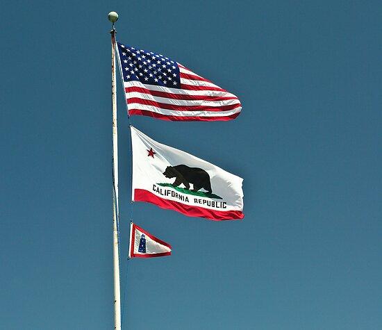 California Flags by melastmohican