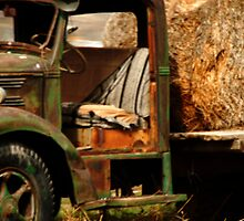 Vintage Hay Truck - American Fork, Utah by Ryan Houston