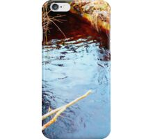 Colorfull Brook Look. iPhone Case/Skin