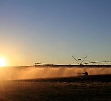 Early Morning Irrigation... by Qnita