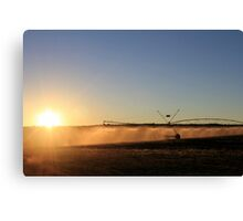 Early Morning Irrigation... Canvas Print