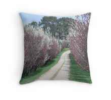 photoj Tasmania - Evandale Throw Pillow