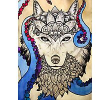 Cosmic Canis Photographic Print