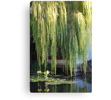 Golden Willow Canvas Print