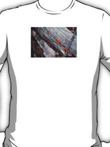 between the cracks T-Shirt