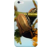 Beetle... (I'm still searching for it's name) iPhone Case/Skin