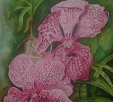 Pink Orchids by Megan Lane
