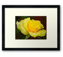 JUST YELLOW - NET GEEL Framed Print