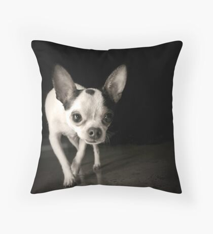 Chihuahua Black & White Throw Pillow