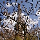 Tower in the shadows 2 by Nixter