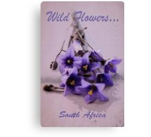 Wild Flowers - South Africa Canvas Print