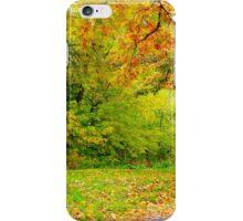 Autumn Season iPhone Case/Skin