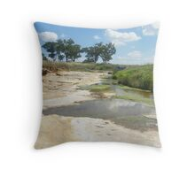 Almost dry stream 1 Throw Pillow