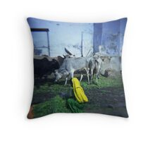 Pushkar, India Throw Pillow