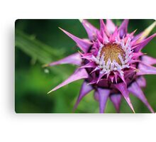 Alien Flower Detail Canvas Print