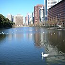 River Around The Tokyo Imperial Palace by Glen Sun