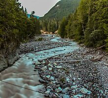 Nisqually River at Longmire by Nicole Petegorsky