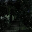night path by xXDarkAngelXx