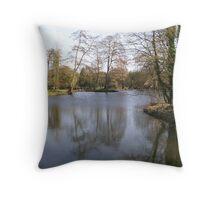 River Avon  Throw Pillow
