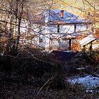 Country Home by Paul Lubaczewski