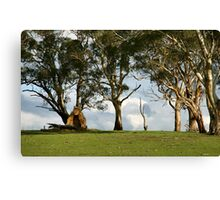 Another Era - Mount Barker Canvas Print
