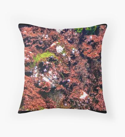 PEQUENO MUNDO LINDO - LITTLE BEAUTIFUL WORLD Throw Pillow
