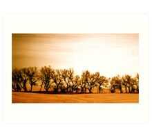 The Farmer's Boundary Art Print