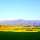 Cade's Cove by Heather Morris