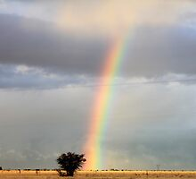 Rainbow Shower... On the farm where I live. by Qnita