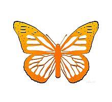 sdd Butterfly 14C by sdavis by mandalafractal