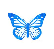 sdd Butterfly 22C by mandalafractal
