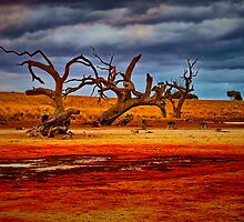 """""""Rusty Lakebed"""" by Phil Thomson IPA"""