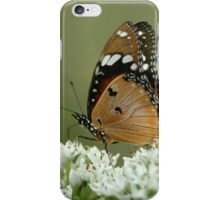 """Miss butterfly... """"Danaus chrysippus (African monarch)"""" Free State, South Africa iPhone Case/Skin"""