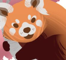 Red Panda & Cherry Blossom Sticker
