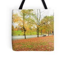 Glowing road in Autumn colors Tote Bag