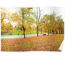 Glowing road in Autumn colors Poster